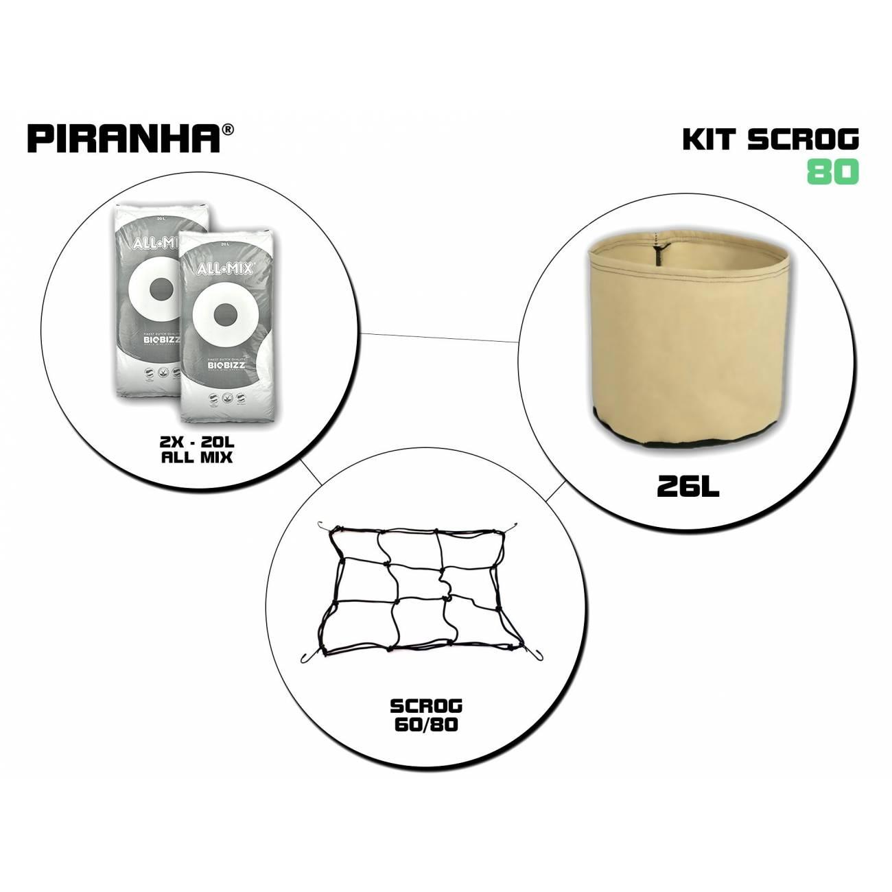Kit SCROG 80