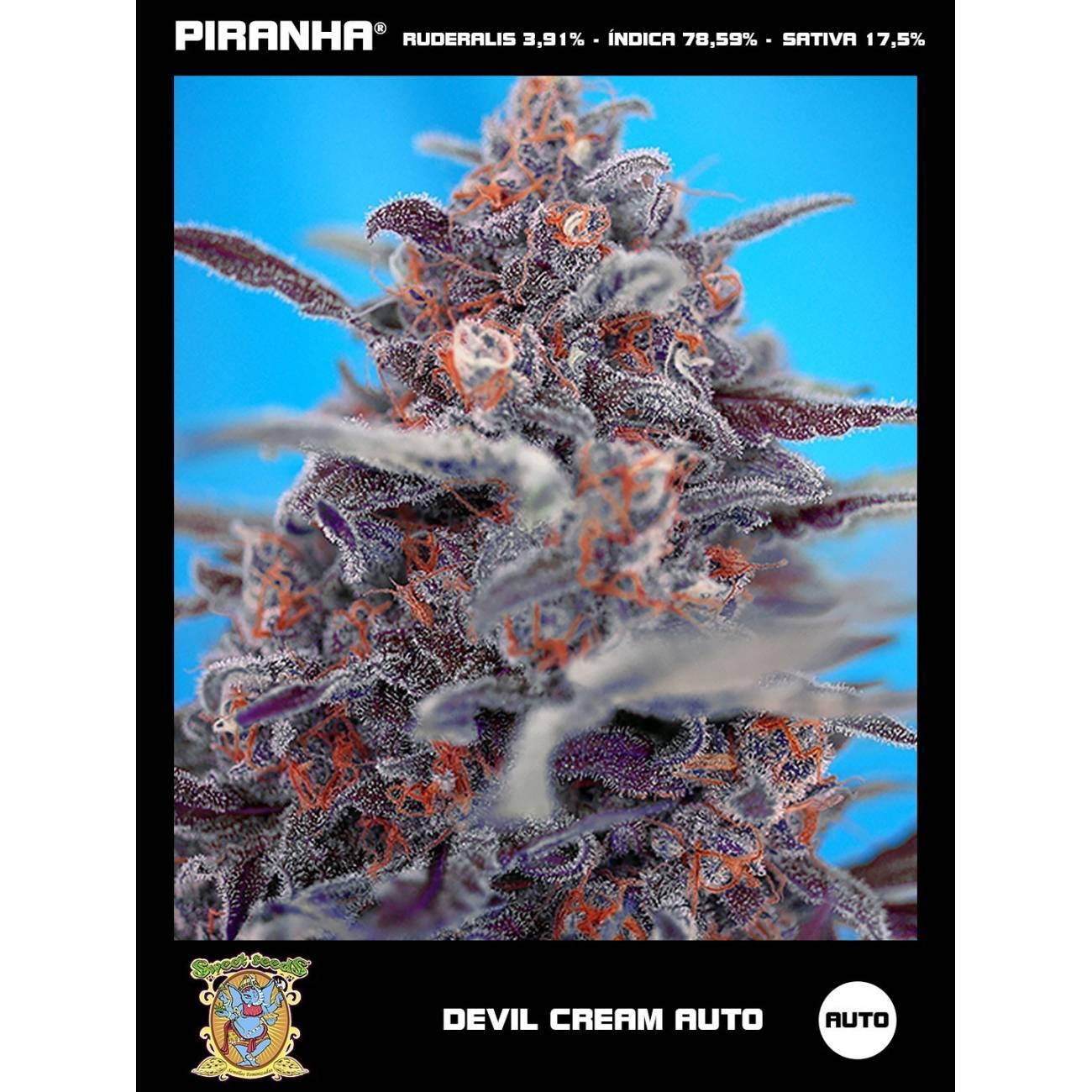 Devil Cream Auto (3+1u)