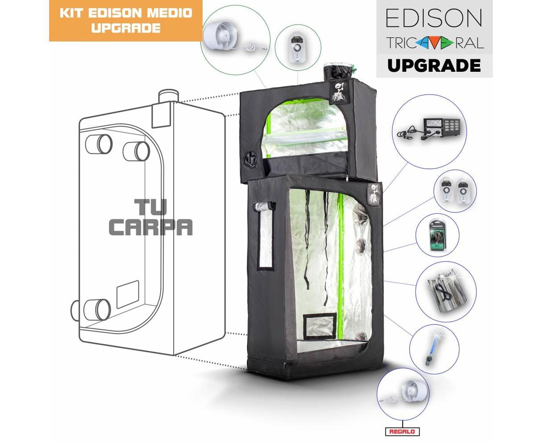 Upgrade Tricameral Edison