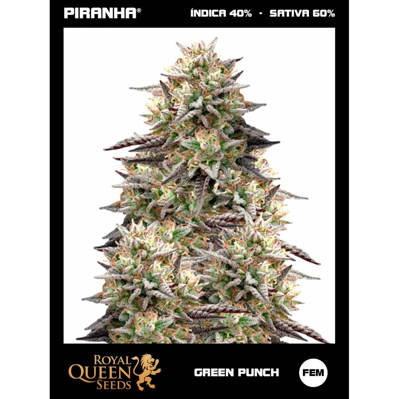 Green Punch (1u)